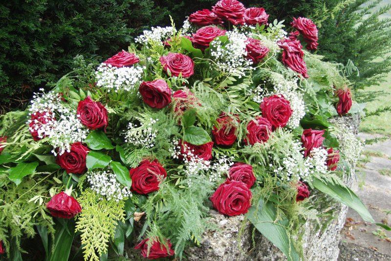 zakład pogrzebowy żoliborz